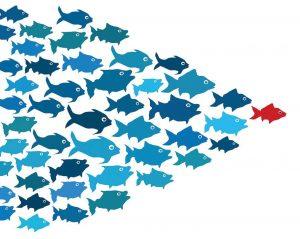 liderstvo, vrodeno, talenti, menadzeri